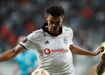 Pepe and Besiktas part company by