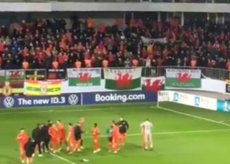 Wales fans celebrate win with