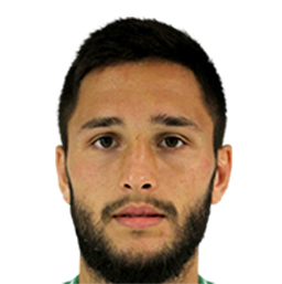 Photo of Florin Andone