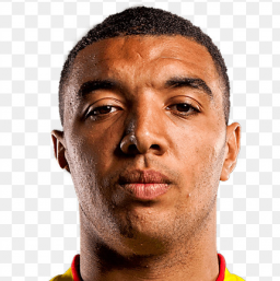 Photo of Troy Deeney