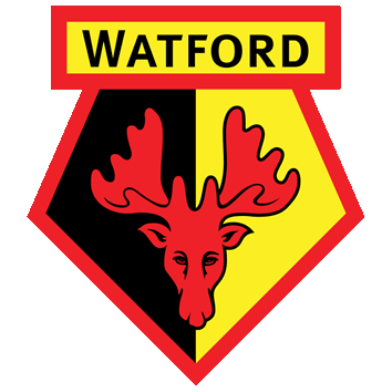 Badge/Flag Watford