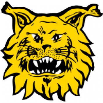 Badge Ilves Tampere