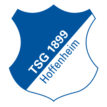Badge/Flag Hoffenheim