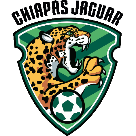 Badge/Flag Jaguares