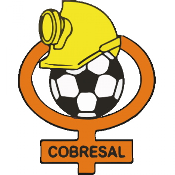 Badge Cobresal