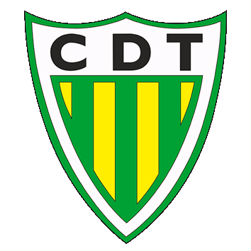 Badge/Flag Tondela