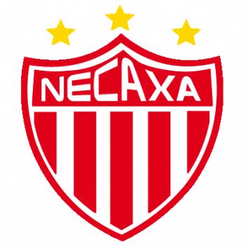 Escudo/Bandera Necaxa