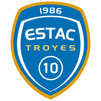 Badge/Flag Troyes