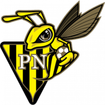 Badge Progrès Niederkorn