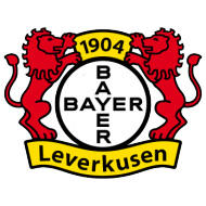 Badge/Flag Leverkusen