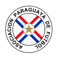 Badge/Flag Paraguay