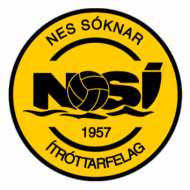 Badge/Flag NSÍ