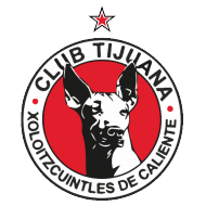 Badge/Flag Tijuana