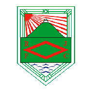 Badge/Flag Rampla Juniors