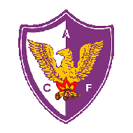Badge/Flag Atlético Fénix