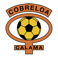 Badge/Flag Cobreloa