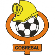 Badge/Flag Cobresal