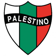 Badge/Flag Palestino