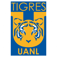 Badge/Flag Tigres