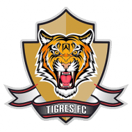 Badge/Flag Tigres FC