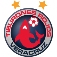 Badge/Flag Veracruz