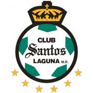 Badge/Flag Santos Laguna