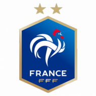 Badge/Flag France