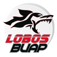 Badge/Flag Lobos BUAP