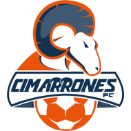 Badge/Flag Cimarrones