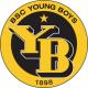 Escudo/Bandera Young Boys