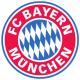 Bayern Shield / Flag
