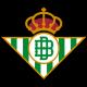 Escudo/Bandera Betis
