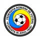 Romania Coat of Arms / Flag