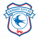 Badge/Flag Cardiff City