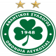 Badge/Flag Omonia