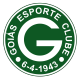 Badge/Flag Goias