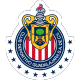 Chivas shield / flag