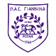 Badge/Flag PAS Giannina