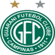 Badge/Flag Guaraní FC
