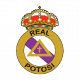 Badge/Flag Real Potosí