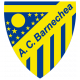 Badge/Flag Barnechea