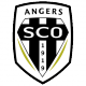 Badge/Flag Angers
