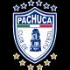 Escudo / Bandera Pachuka