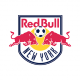 Badge/Flag New York Red Bulls