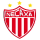 Badge/Flag Necaxa