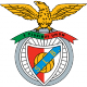 Badge/Flag Benfica