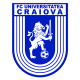 Badge/Flag Universitatea Craiova