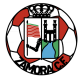 Badge/Flag Zamora