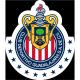 Insignia / bandera de Chivas