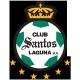 Escudo/Bandera Santos Laguna